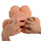 Мастурбатор-торс девушка с вагиной и анусом, фото 2