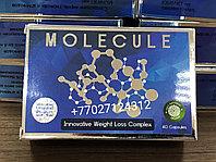 Капсулы для похудения MOLECULE 40 капсул, фото 1