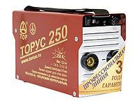 Аппарат инверторный Торус-250 ЭКСТРА (220В, 40-250А) б/к