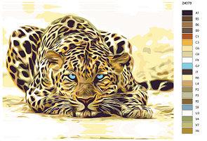 Ягуары, пантеры, леопарды