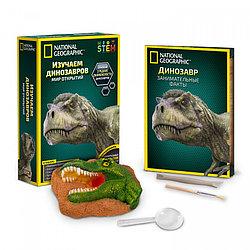 Нат.Гео Игровой набор «Изучаем динозавров»