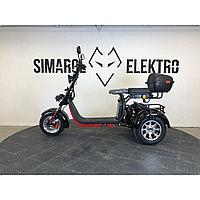 Электромопед Ws-pro Trike+