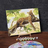 Картина по номерам на холсте с подрамником «Леопард», 40х30 см