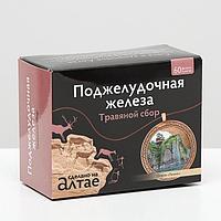 Травяной сбор «Поджелудочная железа», 60 фильтр-пакетов