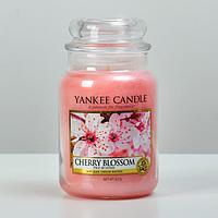 Свеча ароматическая в банке Цветущая вишня Cherry Blossom, 623 гр, 110-150 ч