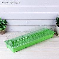 Мини-парник для рассады, 57 × 18 × 12 см, без вставок, Greengo