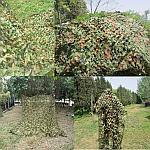 """Маскировочная сетка TUOHAI  """"Лесной массив"""" 4*10м, фото 2"""