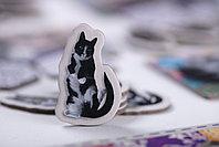 Котики, фото 2
