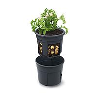 Горшок для выращивания картофеля Potato Grower 2в1   Prosperplast(Польша) IZIE 400