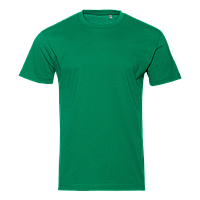 Футболка 51B_Зелёный (30) (S/46)