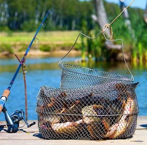sadok rybolovnyj