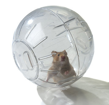 Прогулочный шар для хомячка и других грызунов 12 см