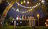 Лампы светодиодные Шарик 1 ватт .E27 , лампа для гирлянды belt light, фото 6