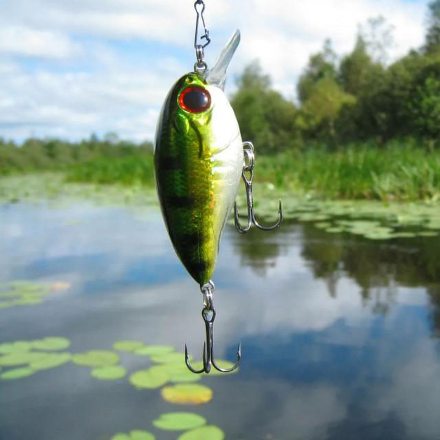 rybolovnye blesna
