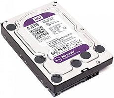 Жёсткий диск Western DigitalWD40PURX