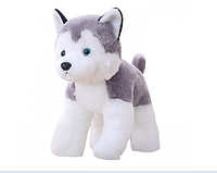 Мягкая игрушка собака хаски 30 см.