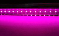 Фитолампа линейная полного спектра 90 см для рассады и зелени