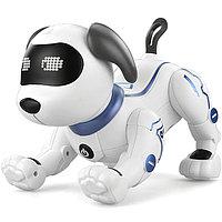 Робот собака на пульте управления Stunt Dog интерактивная на Английском языке