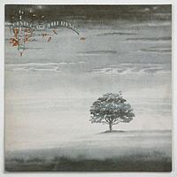 Genesis Wind & Wuthering LP (б/у)