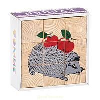 """Томик: Кубики """"Животные леса"""" 9 шт."""
