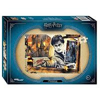 "Step Puzzle: WB. Пазлы ""Гарри Поттер"" 60эл."