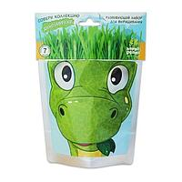 Happy Plant: Выращиваем сами. Динозаврик Бронти
