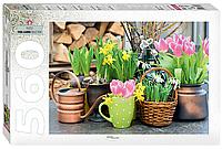 "Step Puzzle: Пазлы ""Весенние цветы"" (Park & Garden Collection) 560эл."
