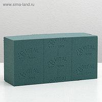 "Губка флористическая ""Оазис Витал"", 23 х 11 х 7,5 см (10 шт)"