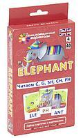 Клементьева Т. Б.: Английский язык. Слон (Elephant). Читаем C, G, SH, CH, PH. Level 4. Набор карточек