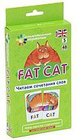 Клементьева Т. Б.: Английский язык. Толстый кот (Fat Cat). Читаем сочетания слов. Level 5. Набор карточек