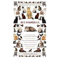Непомнящий Н. Н.: Все о кошках. Иллюстрированный гид
