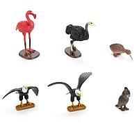 Играем вместе: Набор из 6-и птиц, дикие и домашние птицы