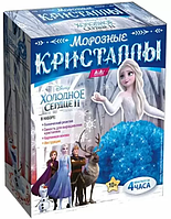 """Набор по выращиванию кристаллов KiKi  """"Морозные кристаллы"""""""