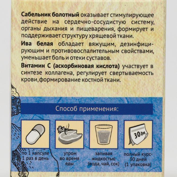 Каменное масло «Радость движения» с сабельником и белой ивой, 30 капсул по 500 мг - фото 3