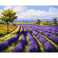 Картина по номерам (40х50) ЛАВАНДОВОЕ ПОЛЕ (27 цветов)