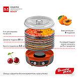 Сушилка 3в1 для овощей и фруктов Волга-9,+ йогурт и десерт + поддон для пастилы, фото 5