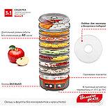 Сушилка 3в1 для овощей и фруктов Волга-9,+ йогурт и десерт + поддон для пастилы, фото 6