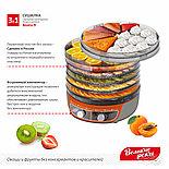 Сушилка 3в1 для овощей и фруктов Волга-9,+ йогурт и десерт + поддон для пастилы, фото 7