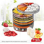 Сушилка 3в1 для овощей и фруктов Волга-9,+ йогурт и десерт + поддон для пастилы, фото 8