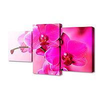 "Картина модульная на подрамнике ""Орхидеи"" 26х50см; 26х40см; 26х32см 80*50см"