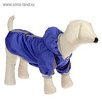 Куртка - ветровка для собак синяя, размер XL (ДС 32-34 см, ОШ 32 см, ОГ 40-44 см)