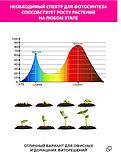 Фито-светильник для растений с регулируемым зажимом, одноламповый., фото 5