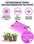 Фито-светильник для растений с регулируемым зажимом, одноламповый., фото 3