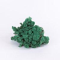 Мох ягель (оливково-зеленый); 4кг.