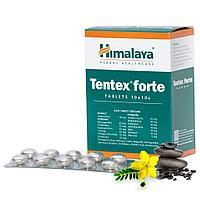 Тентекс Форте (Tentex Forte)