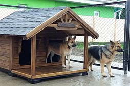 Будка для собаки Nord 100х150см