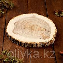 Спил вяза, шлифованный с одной стороны, диаметр 18-20 см