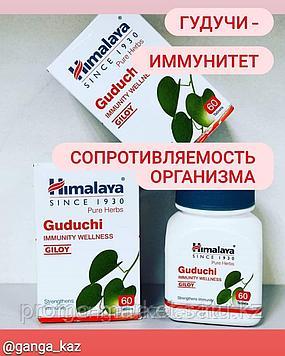 Гудучи (Guduchi Himalay- для укрепления иммунитета, повышения сопротивляемости организма заболеваниям, 60 таб.