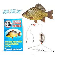 Монтаж универсальный карповый для рыбной ловли с крючком МУСТАД 30 грамм