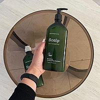 Шампунь с розмарином Aromatica Rosemary Scalp Scaling shampoo